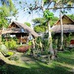 Mayas Native Garden Foto