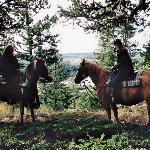 Schöne Mädels auf schnellen Pferden