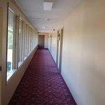 Snelling Motel Foto
