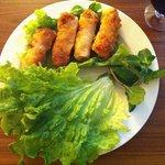 Delicious chicken spring roll