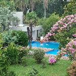 View to pool from our terrace