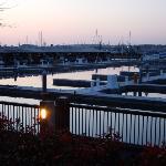 Marina view 1