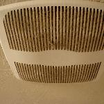 Bathroom vent with germy stuff