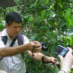 Sendero Panama - Walking Tour of Pipeline Road