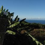 ocean view form lanai