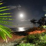 Magic Full Moon-Night at Tippy's