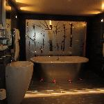 THE bathroom with THE bath