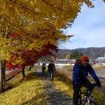 飛騨は山に囲まれているので、秋の風景もオススメです/ Autumn here is so gorgeous!