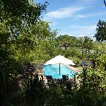 The pool has both shaded and open areas
