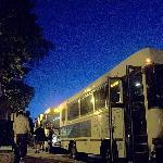 Island Explorer Free Buses