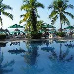 La piscine du lobby 1