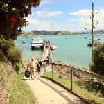 Enjoy arriving in Coromandel on the 360 Discovery Ferry and be greeted at the wharf by the Corom