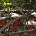 Great garden setting