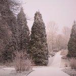 Botanischer Garten Rombergpark
