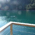 humpback whales seen form the yurt deck in May