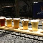 paddle sampling of brewery beer