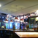 Inside Happy Rock Bar and Grill