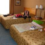 2Q std room (#504)
