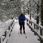 Shay Trace Trail
