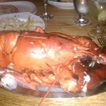 We were fortunate to find 5lb lobsters on the menu one night.