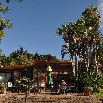 Valley House 1 gardens