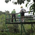 Ziplining over the Rain Forest