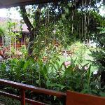 Photo of Nam Khong Guest House