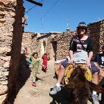 Photo of Berber Travel Adventures
