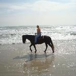 My horse, Roman, liked to walk in the waves.