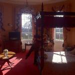 chandler suite