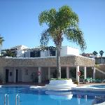 Delightfully shaped pool with palm tree