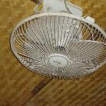 Dusty fan