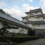 Chiba Natural History Museum and Institute Otaki Castle Branch
