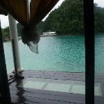 Bild från Club Tara Resort