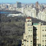 Central Park from lounge