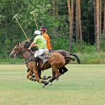 Polo Training