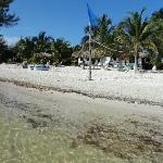 Vista de las cabañas desde la playa