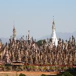 Forest of temples
