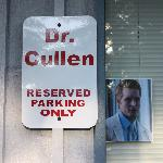 Dr. Cullens parking lot