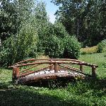 puente y parque