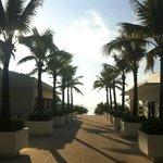 the walk to the pool around sunset