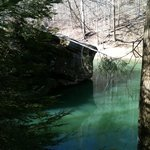 Foto de Daniel Boone National Forest