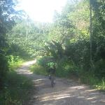 fantastic stretch of off-road cycling