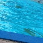 Piscina de água mineral/Mineral water pool