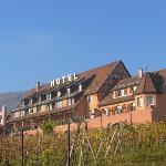hotel rustig gelegen in de wijngaarden