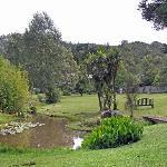 Gardens at the Bushland Park Lodge