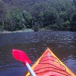 Take a Kayak and explore the National Park