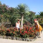 Fina blommor i Elba Carlotas trädgård