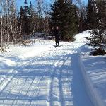 Beautiful trails!