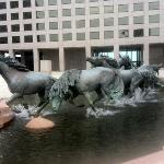 Mustangs of Las Colinas Foto